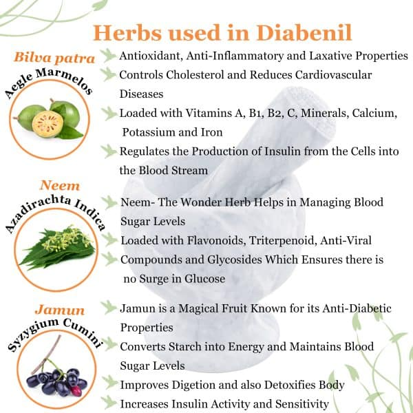 Panchagavya herbs for diabetes