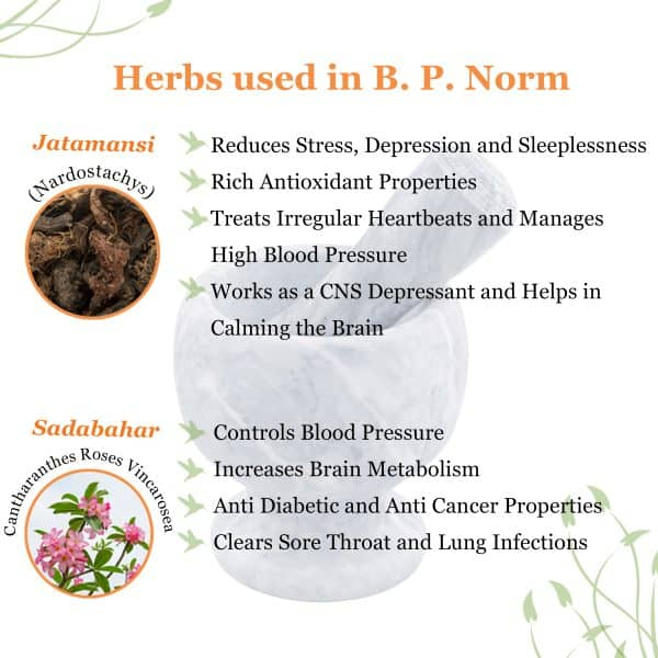 miracle herb for blood pressure