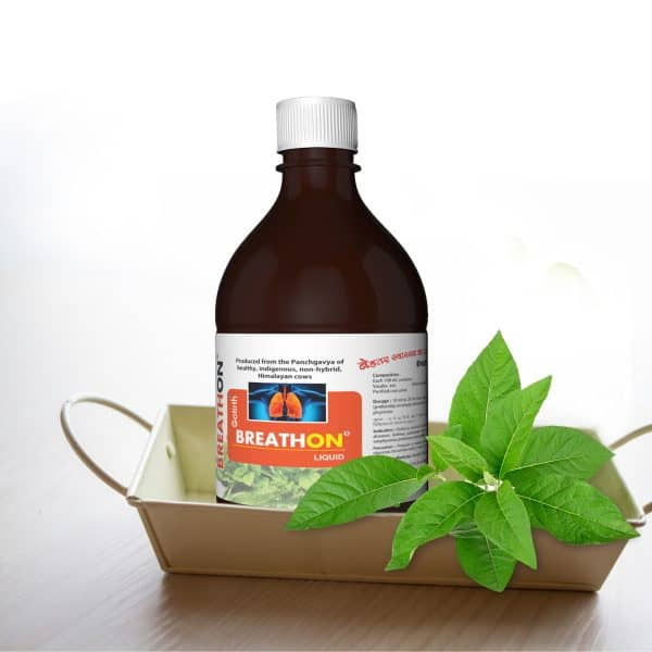 Gomutra for breathing problems