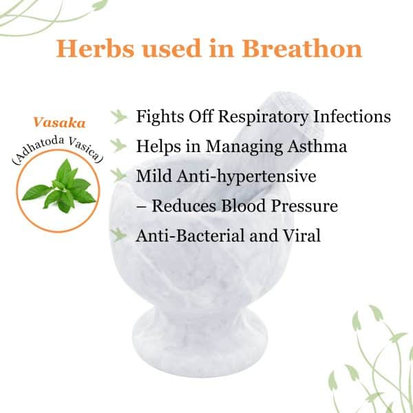ayurvedic herbs for breathing problems