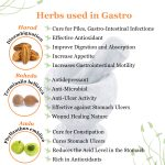herbal remedies for gastritis