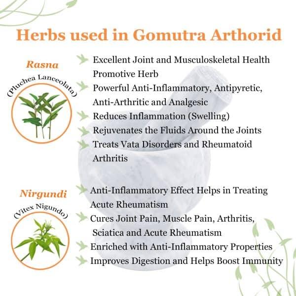 herbs for bones