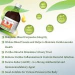 Cow urine therapy for Heart issues