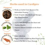 ayurvedic herbs for heart