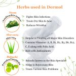 herbs for skin problems