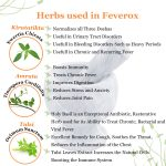 Herbs for fever