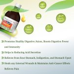 gomutra for gastric