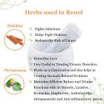 best kidney cleansing herbs