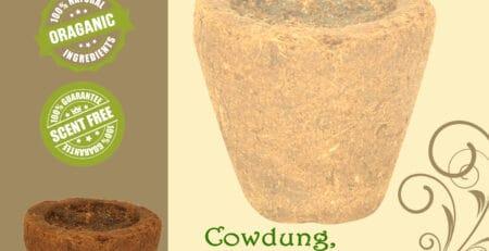 Cow dung Sambrani Cup